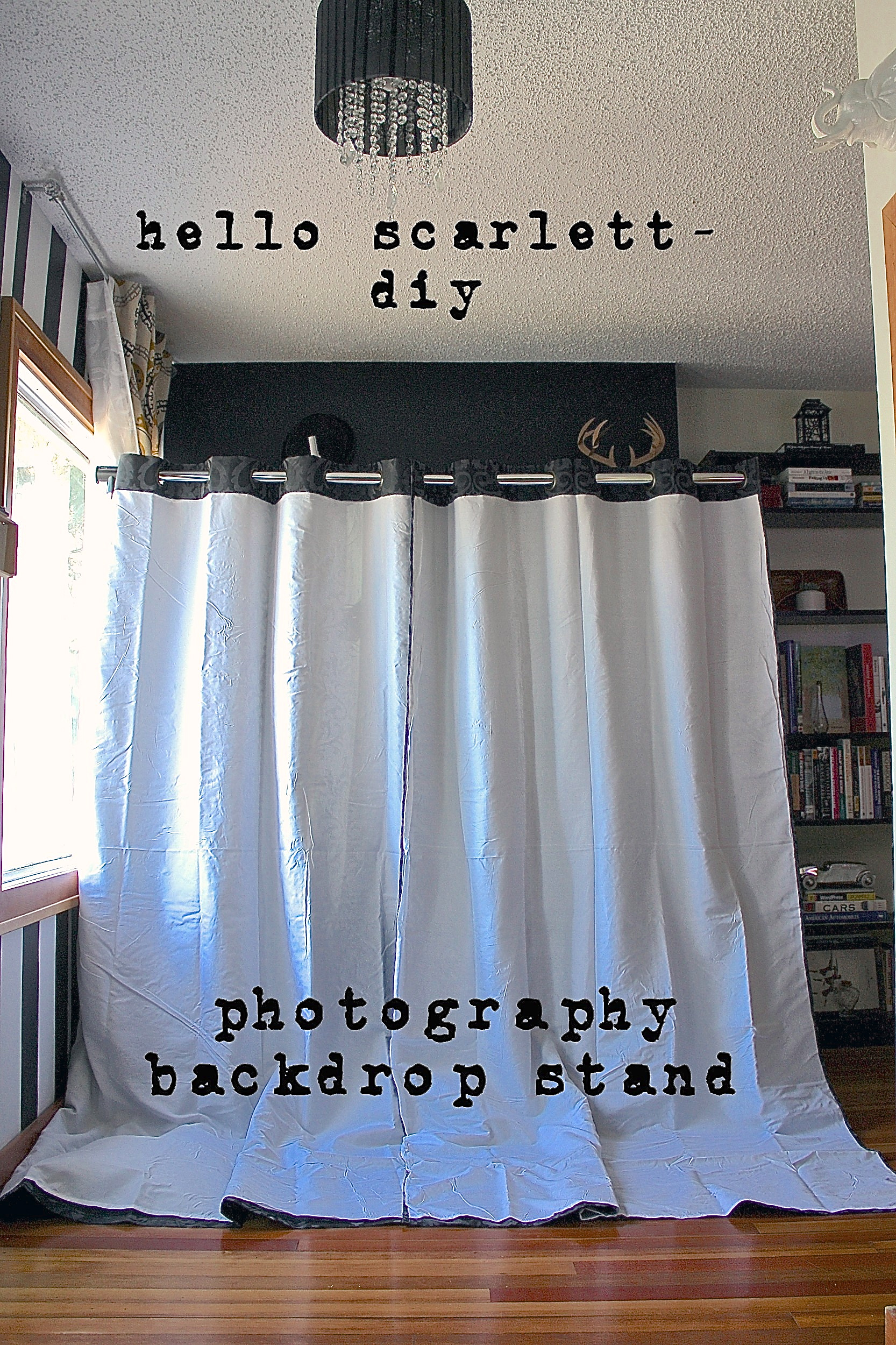Photography Backdrop Stand Diy Hello Scarlett Blog